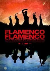 Фламенко, фламенко(2010)