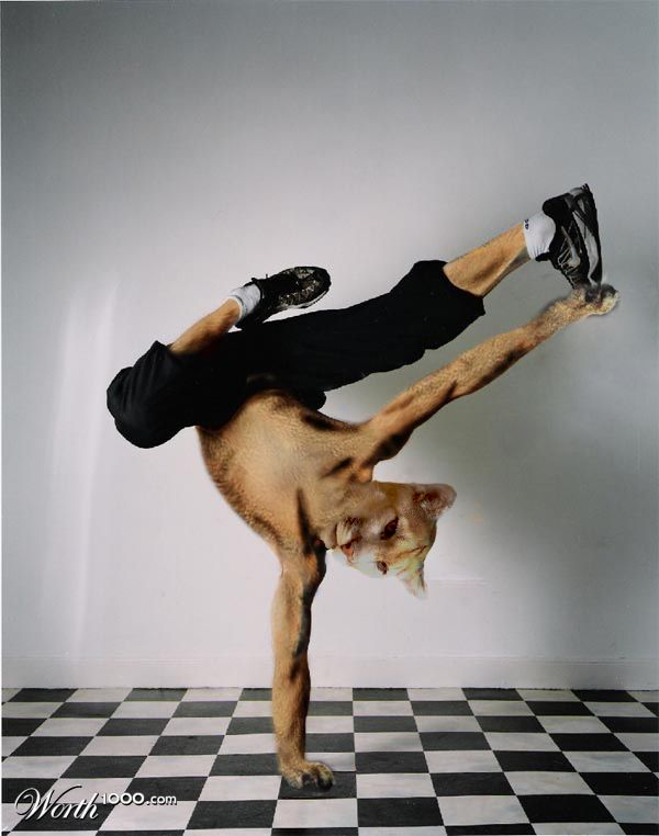 1265483805_dance1008