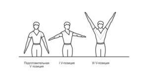 V-позиции